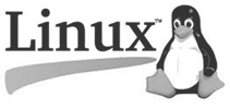 linux dedicated server hosting services